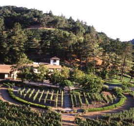 SLD - NEW2 - Pine Ridge Winery
