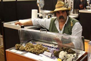 Truffle - Strange vendor with truffles at 350 dpi