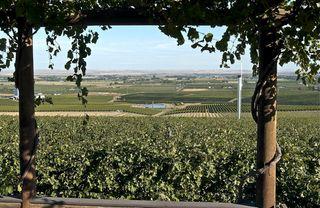 A - Seven Hills Vineyard