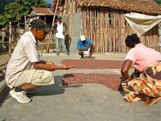 Madecasse - drying cacao in Madagascar
