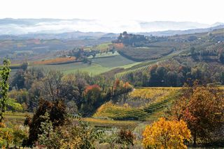 Barolo - Jim's shot 1
