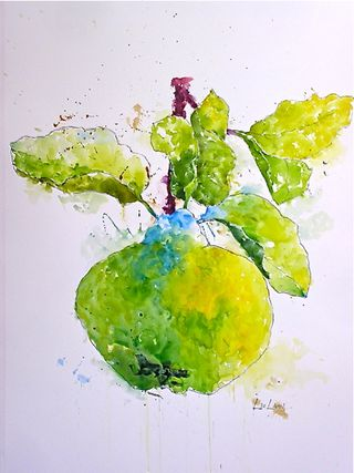 "A – ""Quince,"" 40%22x 35%22"