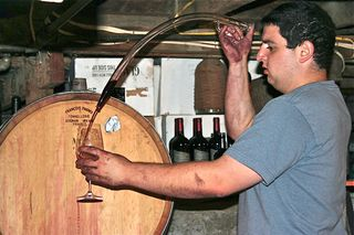 A - Charter Oak, David Fanucci in cellar