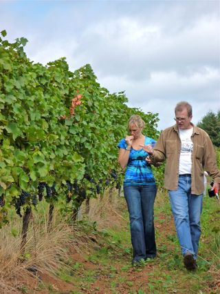 A – Tra Vigne- Jay walking in vineyard