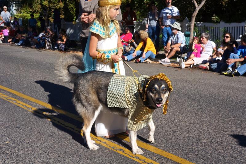 A – Parade 7