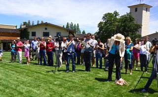 Guests assembled on the lawn