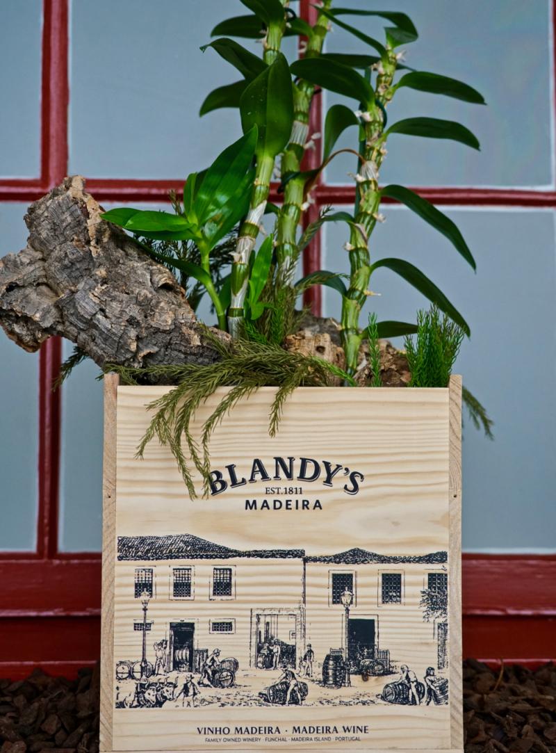 Blandy's planter box