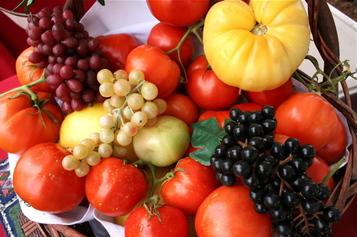 Tomato_tomatoes_1
